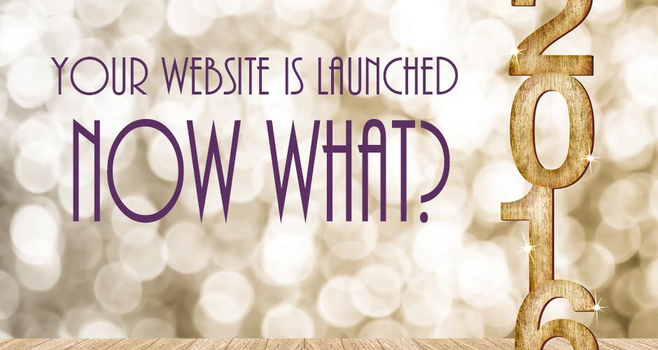 Your Website is Launched ... Now What